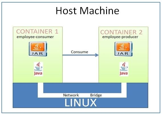 Docker Networking Service