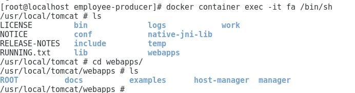docker-container-exec