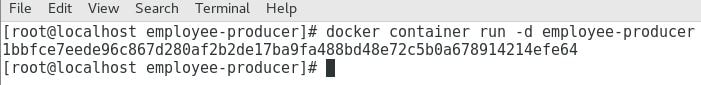 Docker Run Image as Container